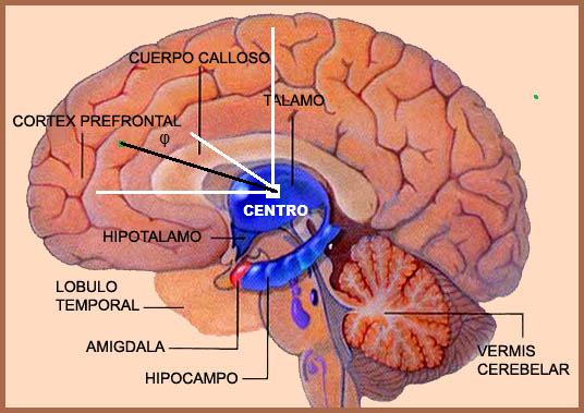O centro está para um referencial assim como a região periférica para a borda de um hemisfério.
